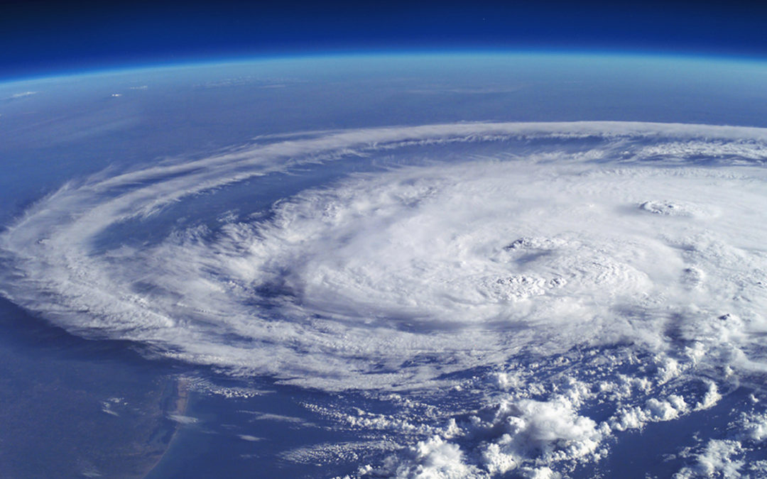 Florida Citizens Approves Early End to 'Hurricane Tax'
